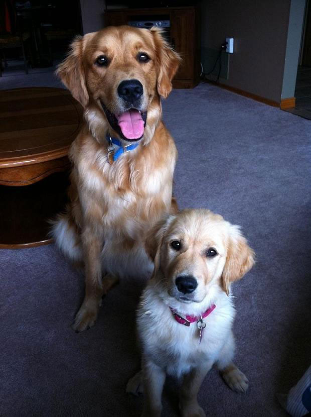 Bailey & Max